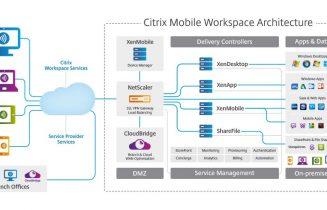 Citrix-WS-architecture1